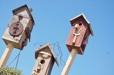 Garden_birds_house